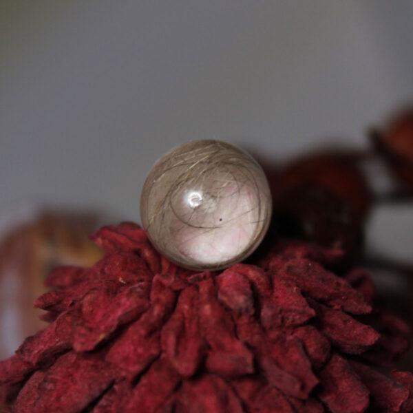 Tierzauber Perle mit Krone